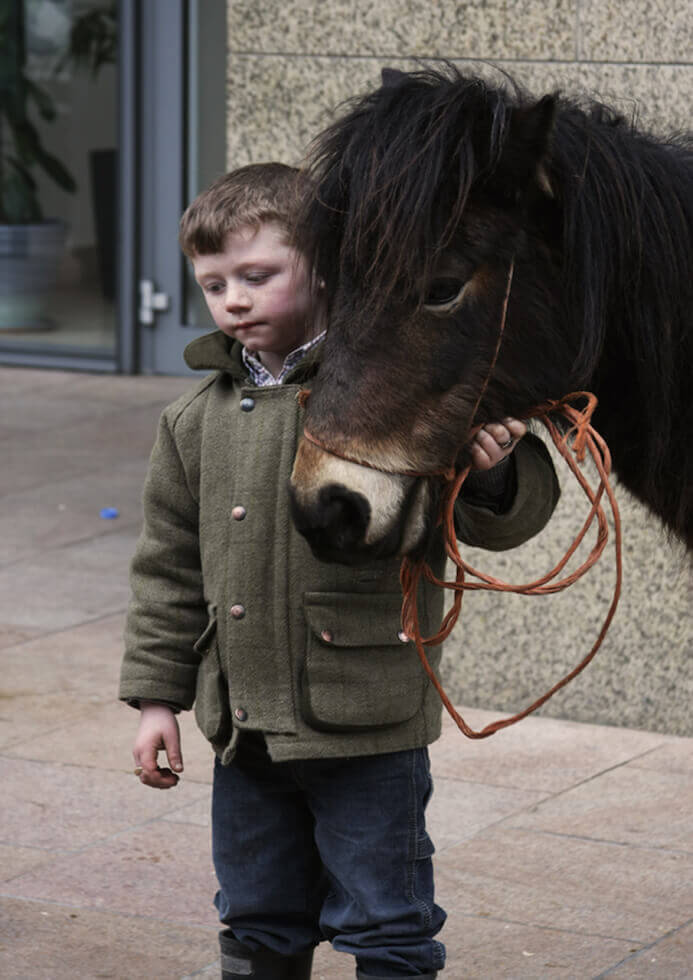 little boy and a horse in dublin ireland