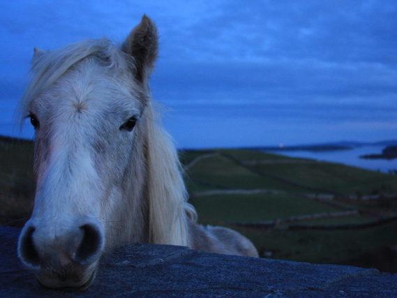 Photographs of Connemara in West Ireland Photography Portfolios